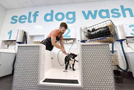 PetSmart Opens First PetSmart Pet Spa Store™